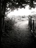 23rd September, well trodden path