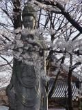 ToKyo & Nikko JAPAN Spring 2004