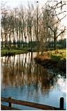 A stream near Nuenen