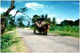 Road from Cirebon to Surabaya, Java, Indonesia