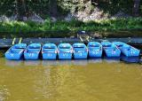 Rental boats on the river