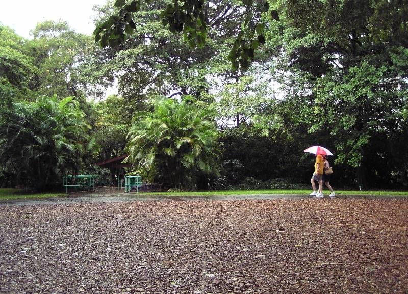 Rainy days and Sundays