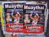 Muay thai in Prague