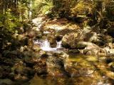 White Mountain Waterfall
