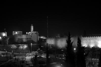 Davids Citadel 3