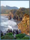 Cape Hedo Cliffs