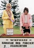 Winner's Dog