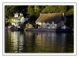 Riverside thatch at Dittisham