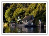 Thatch by the water Dittisham
