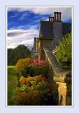 Brunel Manor ~ steps and flower border (2739)