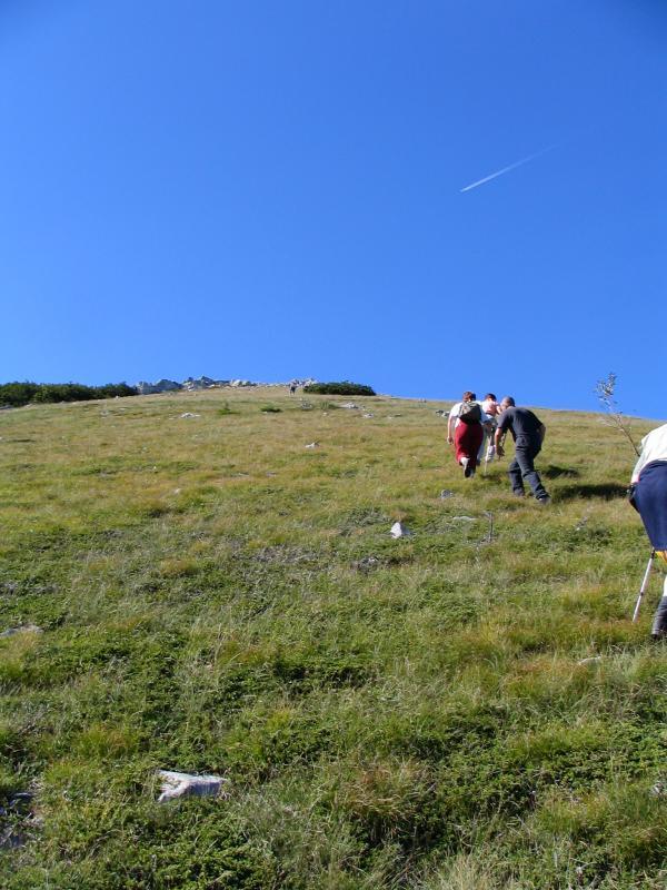 Uphill .JPG