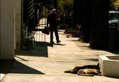 Sidewalk Siesta, Tecate, Mexico, 2004