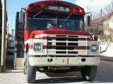 2254 Local Bus.jpg
