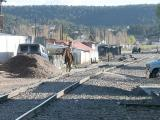 2260 Horseman in Creel.jpg