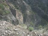 2460 Cliffs.jpg