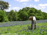 #1 Bluebonnet Lane