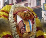 thiruvadi of thiruvEnkatamudaiyan taken to alamElumangApuram