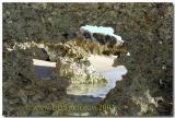 Small Nature' s Window National Park Western Australia