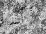 Granite 426