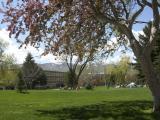 Earth Day at ISU or Idaho State University DSCN1319.jpg