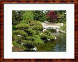 Japanese gardens matte framed