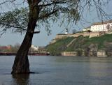 The Danube and Petrovaradin Fortress