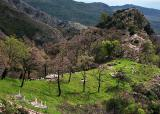 Cemetery in the Rumija Mountains