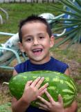 happiness is picking your first watermelon