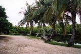 Grand Cayman 01.jpg