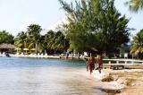 Grand Cayman 11.jpg