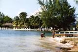 Grand Cayman 12.jpg