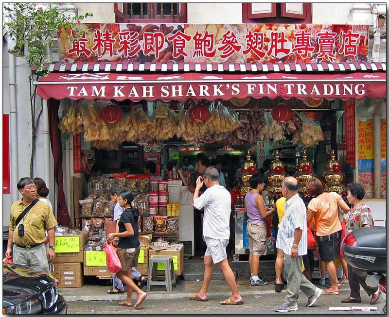 Sharks Fin Sales, Chinatown