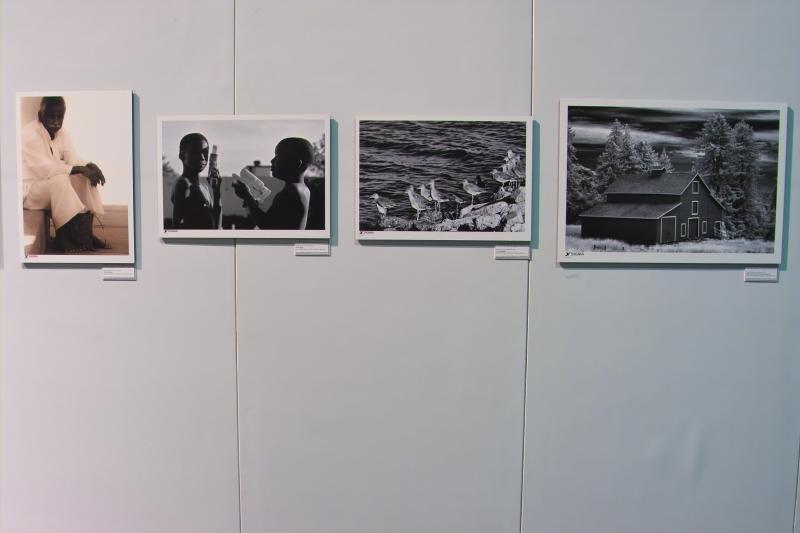 Sigma Gallery 4