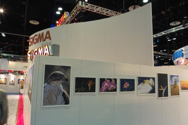 Sigma Gallery 8