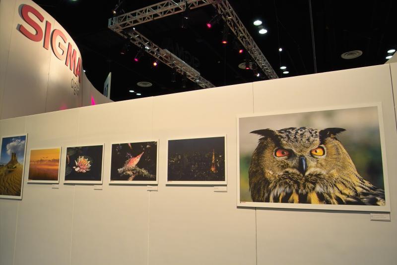 Sigma Gallery 9