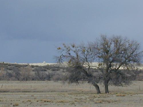 Near Peeples Valley, AZ