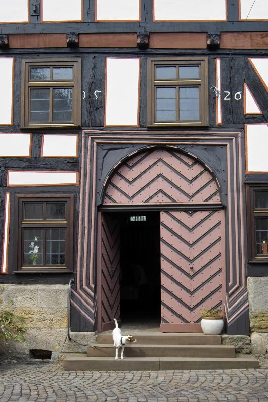 Dog Guarding 1526 Door