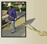 Sweeping Up, Hu Xian