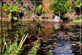 1 May 2004 - Water Gardens