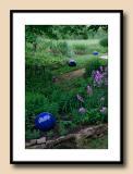 Evening Garden--Blue Balls