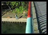 Passerellesen bord de Marne