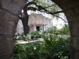 Alamo Courtyard
