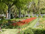 Garden behind the Governor's Mansion