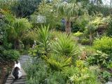 The Lost Garden of Kidderminster (UK)