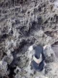 Rocks with shoe