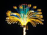 Lights in Merida