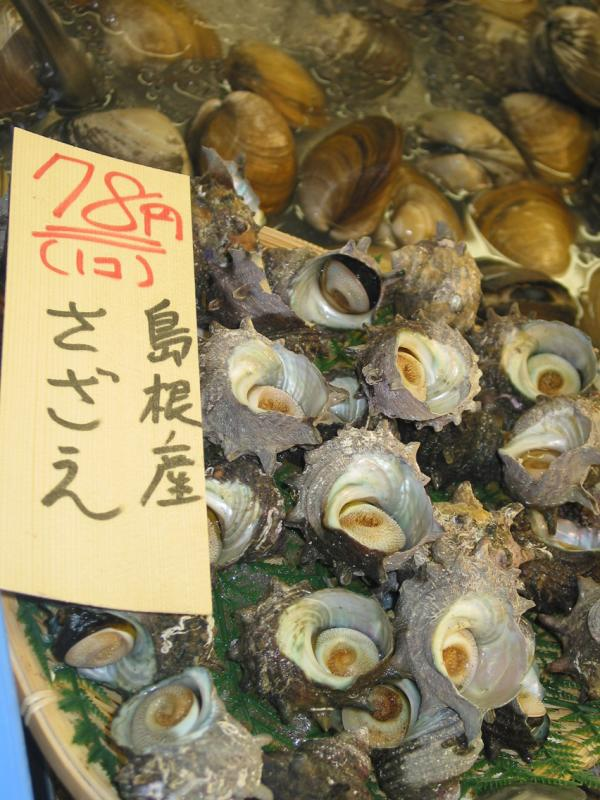 Abalone in the market