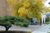 Autumn at Garrison House DSC_0074.jpg