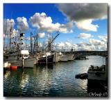 Harbor 1