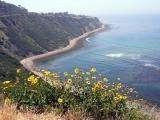 Palos Verdes seascape